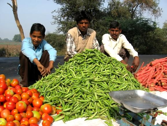 India: The Future Of The Food Industry