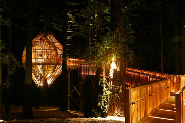 'Treehouse Restaurant' Shaped Like A Cocoon Makes For A Romantic Dining Spot