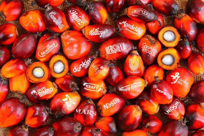 """New Campaign Aims To Remove """"Conflict Palm Oil"""" from America's Snack Foods"""