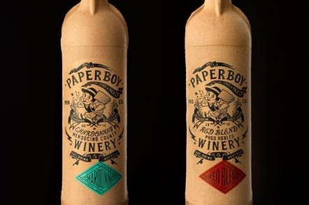Read All About It: Introducing Paper Boy!