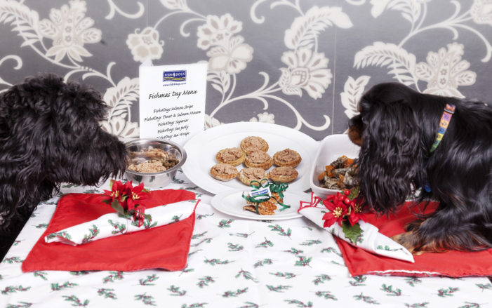 66% of UK will Prepare a Special Christmas Day Dinner… For Their Dog