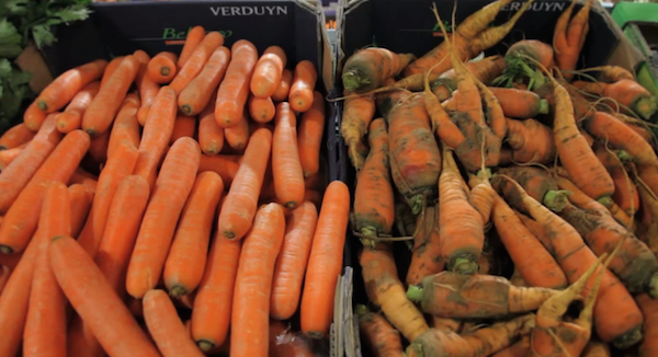 French Supermarket Sells Inglorious Fruits & Vegetables To Reduce Food Wastage