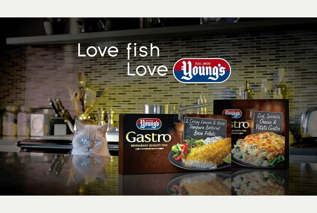 Connoisseur Cat Has Serious Food Envy in New Young's Seafood Campaign
