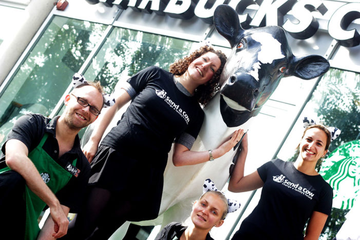 Send a Cow Partners with Starbucks to Launch a 'Moo-sive' Campaign