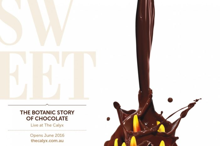 Chocolate-coated Campaign by M&C Saatchi Launches Sweet Addiction