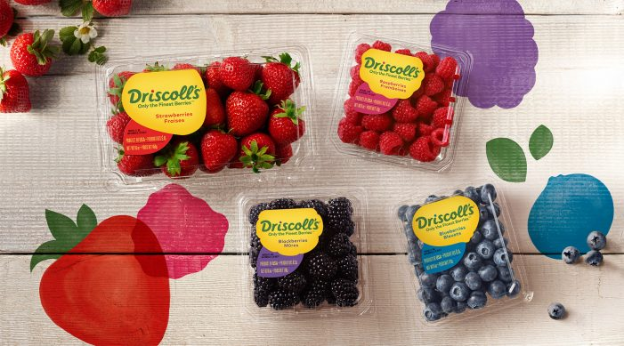 Pearlfisher Develops New Global Brand Identity For Berry Brand Driscoll's