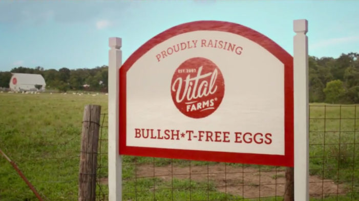 Vital Farms Calls Bullsh*t on Cage-Free Eggs with New Campaign by ...