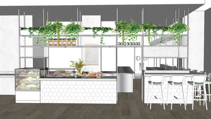 Vegan Restaurant Stem + Glory Launching in London in January