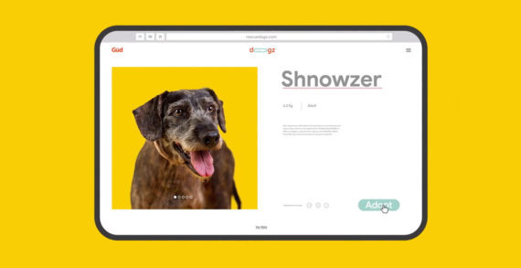 Pet Food Brand Güd Hacks Common Misspelled Dog Breed Names on Google to Drive Adoption