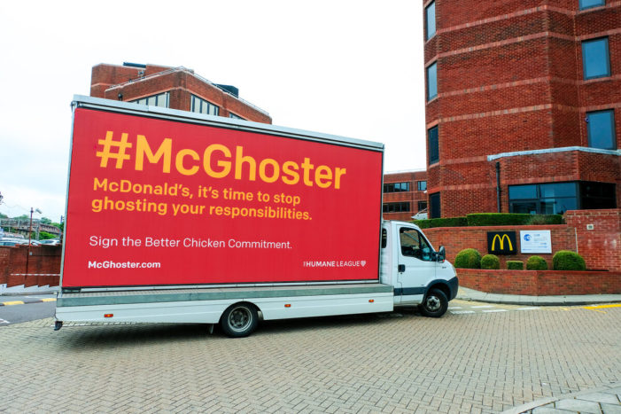 New #McGhoster Campaign by the Humane League Calls Out McDonald's
