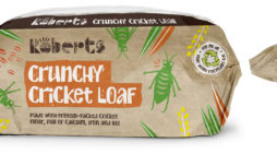 Anyone For Crickets?