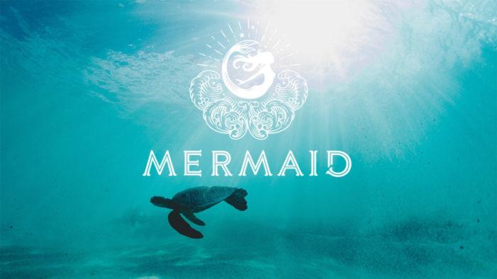 Mermaid Goes Net Zero