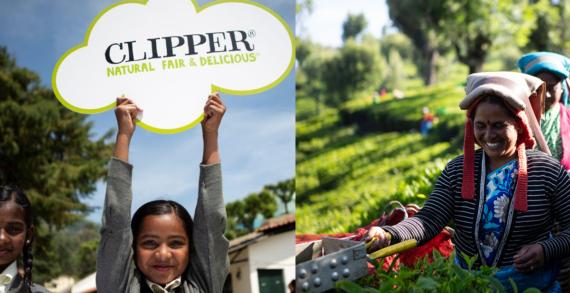 Serve Climate Justice With Fairtrade Tea