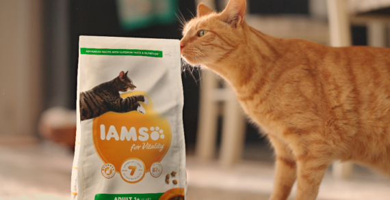 National Pet Week Marks The Launch Of IAMS' New National Brand Campaign