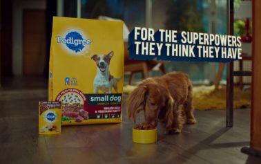 "Mars Petcare Brand Launches NEW ""Hero-ish"" Campaign"