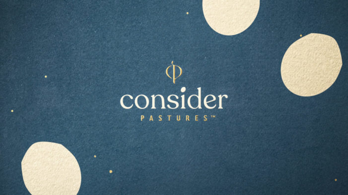 Pearlfisher's brand creation for Consider Pastures sets the golden standard for eggs