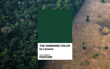 Lavazza & Pantone Color Institute highlight deforestation in the Amazon, with launch of The Vanishing Color